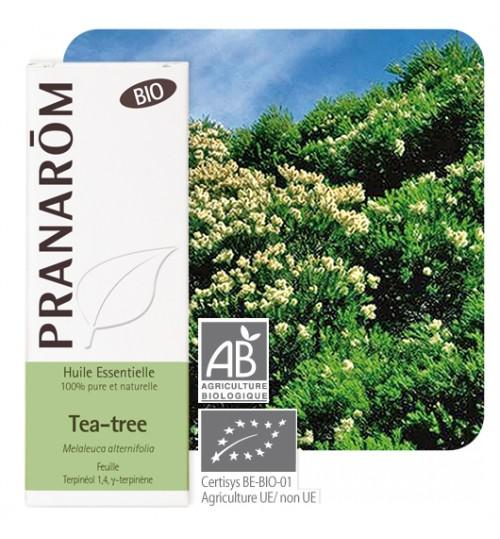 Hebio Tea Tree Pranarom - Ljekarna Online